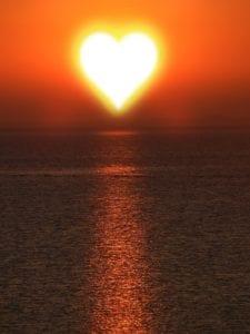 slunce zvyšuje imunitu hyla