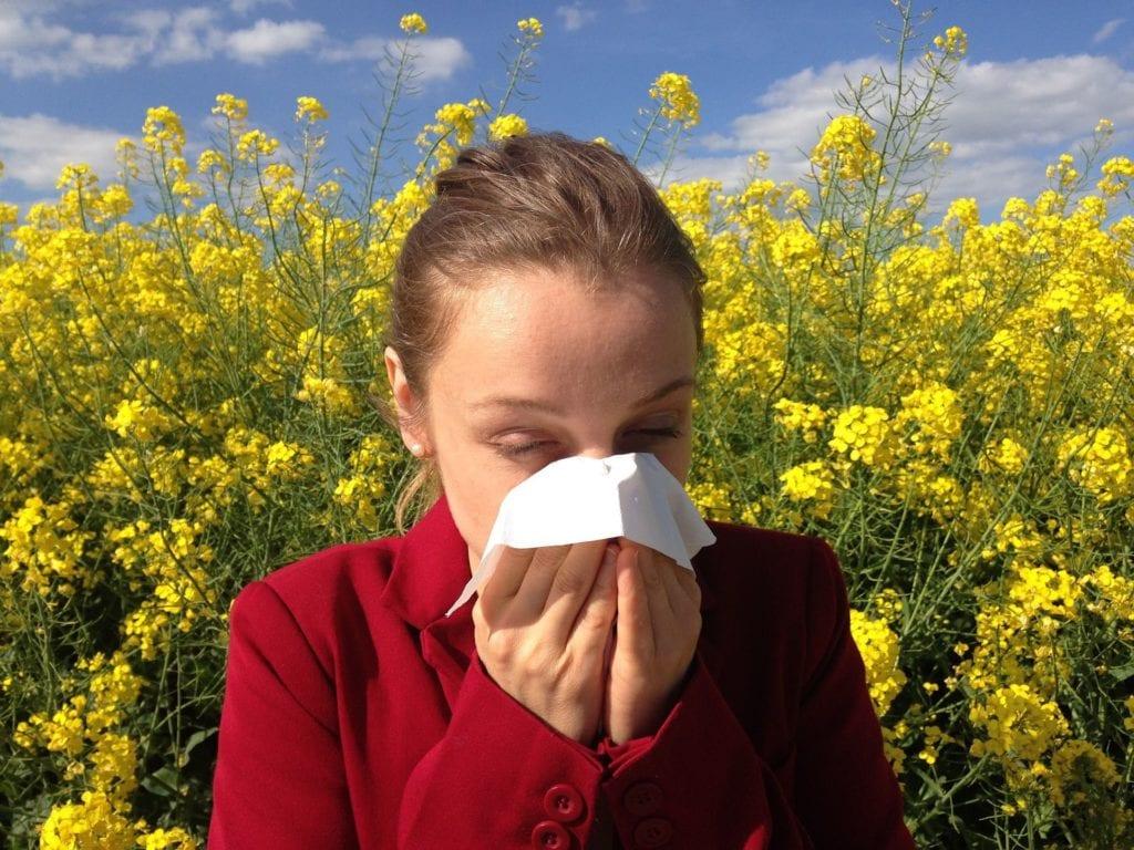 alergie napyly, způsob jejich neutralizace aropoznávání
