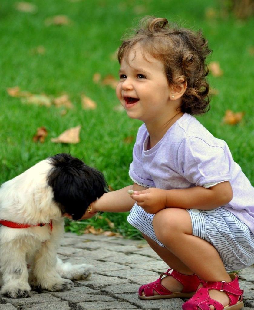 štěně olizuje dítě abaví to oba
